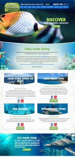 Web design for scuba diving company